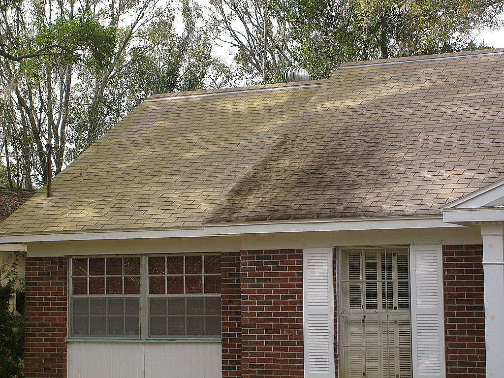how to clean green moss from roof