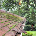 Is Your Roof Dirty?