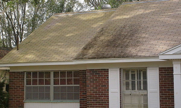 What Is Soft Washing Asphalt Shingles?
