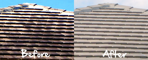 Tile Roof Cleaning in Long Island, New York.