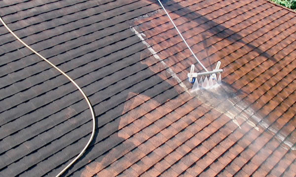 Bellmore Long Island Ny Roof Cleaning Dirty Roof Com