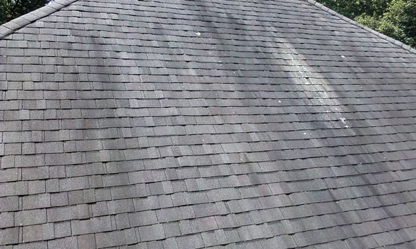 Roof Cleaning Company in Oyster Bay, Long Island.