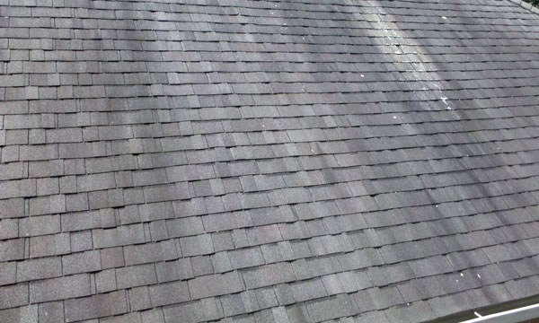 Clean Your Long Island Roof