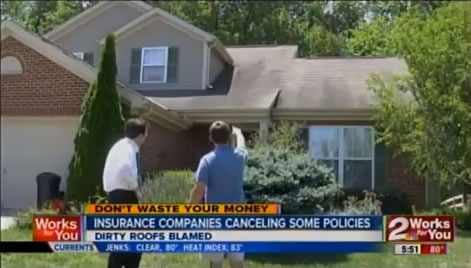 News Clip on Dirty Roofs
