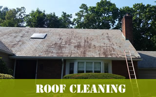 Roof Cleaning Services Long Island New York.